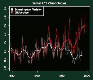 Yamal_RCS_Chronologies