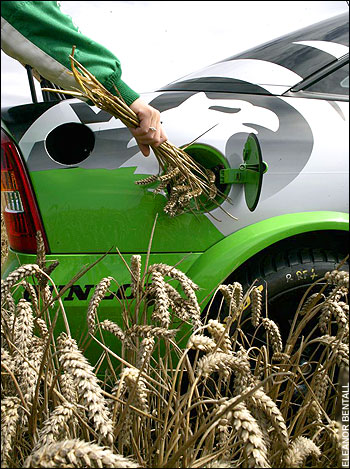 biofuels(1)