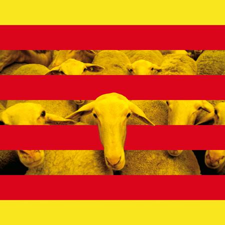 Las elecciones 2010 en Cataluña, más de lo mismo