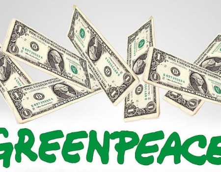 India cancela las licencias de Greenpeace por delitos de fraude