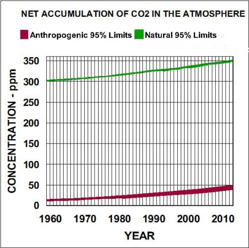 Acumulacion neta de CO2