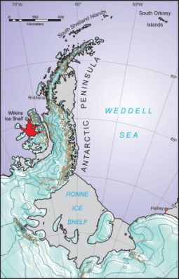 wilkins_ice_shelf