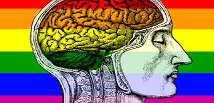 Indagando en los orígenes de la homosexualidad masculina