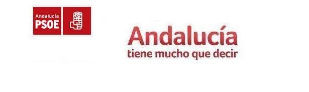 Fisking al programa del PSOE andaluz. Introducción