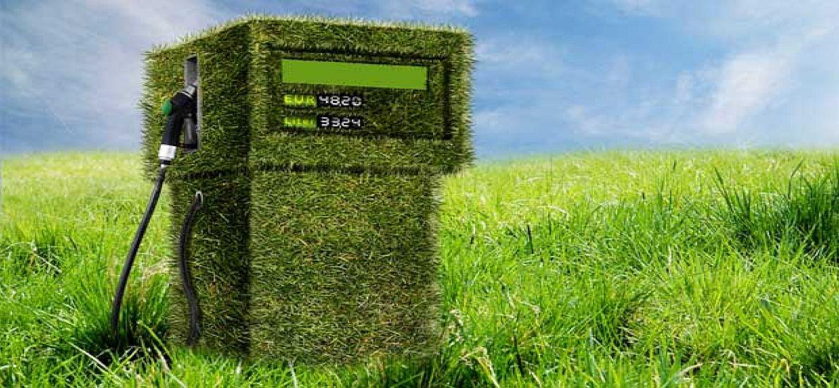 Los biocombustibles, peores que el petróleo para el medio ambiente