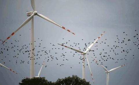 Las políticas energéticas verdes: más paro, menos industria
