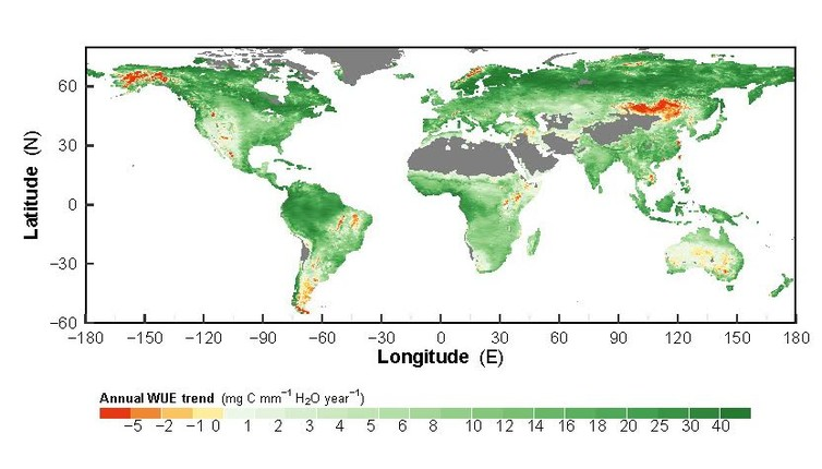 Alarmistas climáticos alucinados de lo bueno que es el CO2 para las plantas