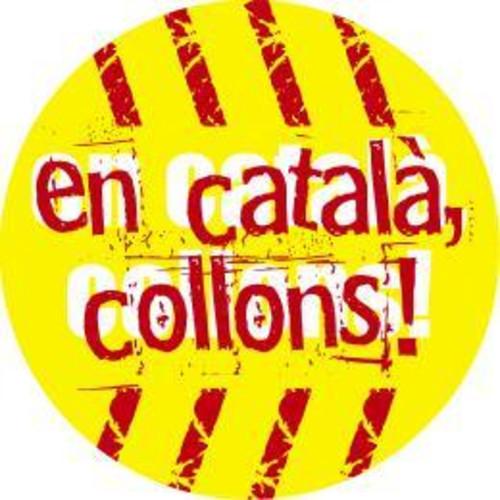 ¿Inmersión o ahogamiento lingüístico en Cataluña?