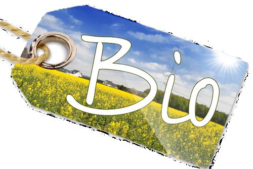 Pesticidas, productos fitosanitarios y los vinos ecológicos