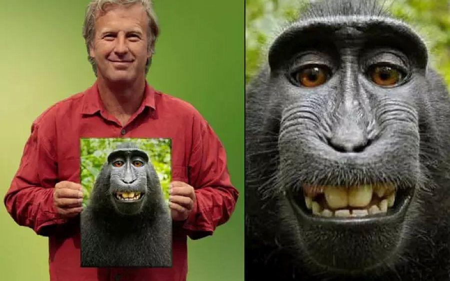 """Defensores de los """"derechos de los animales"""" haciendo el mono"""